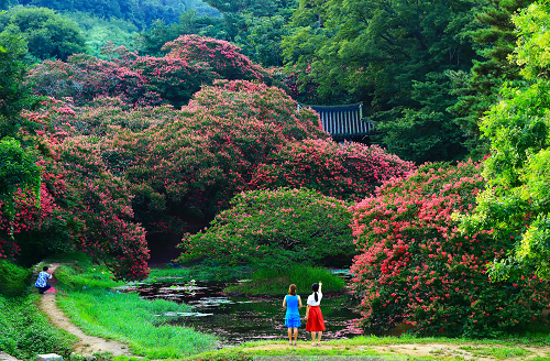 (92-2) 김현옥 아름다움 앞에 서다(대상).png