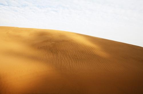 우이도모래언덕풍성사구20160616024.png